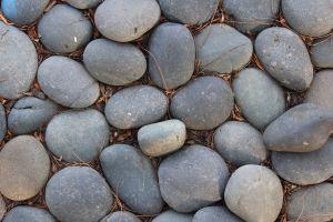 Gfp-rocks