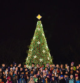 256px-Childrens_choir_-_US_National_Christmas_Tree_2012
